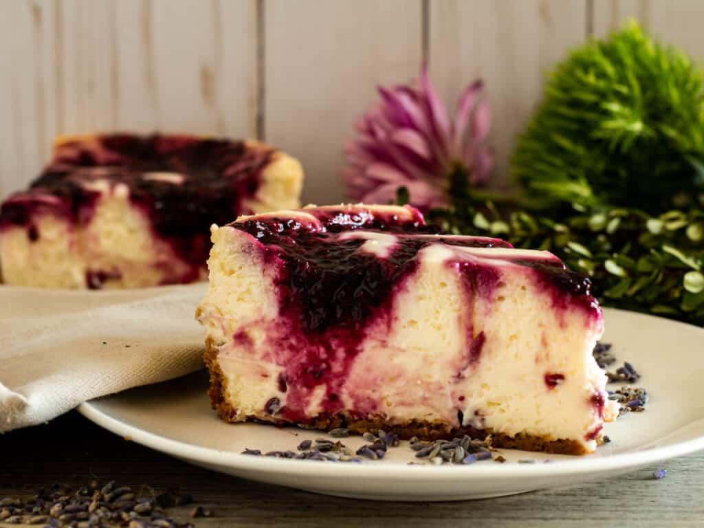closeup photo of blackberry cheesecake